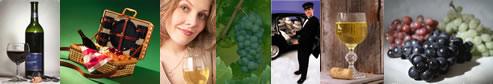 Long Island Winery Tours - Long Island Vineyard Tours - specializing in limousine services for wine tasting in the Long Island, New York area.  Tours featuring professional chauffeurs, luxury sedans, stretch limousines, vans, more.